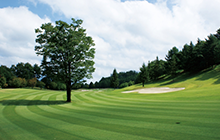 人気のゴルフウェアブランドの高価買取